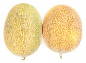 Melons isolated on white