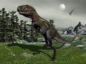 Nanotyrannus dinosaur - 3D render