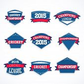 Blue sticker, tag or label design with red ribbon for Cricket sports concept.