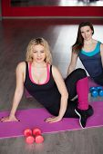Two Female Friends Do Fitness Exercises On Mats