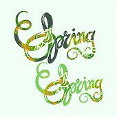 Handlettering Spring Inscription Pattern