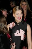 PALM SPRINGS, CA - JAN 3: Rosamund Pike arrives at the 2015 Palm Springs International Film Festival Awards Gala at the Palm Springs Convention Center on January 3, 2015 in Palm Springs, CA.