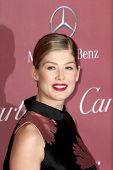 PALM SPRINGS, CA - JAN 3: Rosamund Pike arrives at the 2015 Palm Springs Film Festival Awards Gala at the Palm Springs Convention Center on January 3, 2015 in Palm Springs, CA.