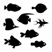 Fish silhouettes vector illustration.