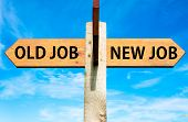 pic of arrow  - Wooden signpost with two opposite arrows over clear blue sky Old Job and New Job Career change conceptual image - JPG
