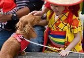 Young Japanese girl in yukata kimono plays with a dog