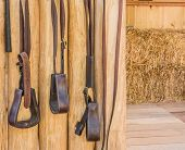 pic of riding-crop  - riding horse equipment hang on wooden fence - JPG