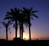 Garrucha Beach Sunset