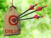 Civil Law - Arrows Hit in Red Target.