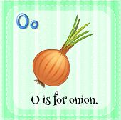 Illustration of a letter o is for onion