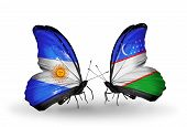 Two Butterflies With Flags On Wings As Symbol Of Relations Argentina And Uzbekistan