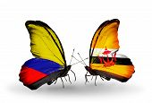 Two Butterflies With Flags On Wings As Symbol Of Relations Columbia And Brunei