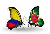 Two Butterflies With Flags On Wings As Symbol Of Relations Columbia And Dominica
