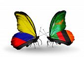Two Butterflies With Flags On Wings As Symbol Of Relations Columbia And Zambia