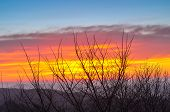 Lviv Sunrise