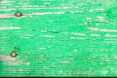 picture of nail paint  - Background of old board with peeling green paint and rusty nails - JPG