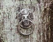 stock photo of lions-head  - Door knocker in the form of a lion - JPG