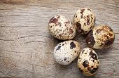 foto of quail egg  - Quails eggs on rustic wooden background with copy space - JPG