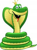 stock photo of green snake  - Cartoon illustration of a green snake - JPG