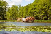 stock photo of virginia  - A duck blind on the Chickahominy river just west of Williamsburg Virginia - JPG