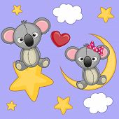 stock photo of koala  - Valentine card with Lovers Koalas on a moon and star - JPG