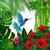 pic of colibri  - Tropical floral design background with bird - JPG