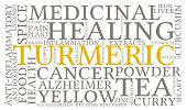 pic of ringworm  - Turmeric word cloud on a white background - JPG