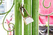 pic of habilis  - key lock in the door green old - JPG