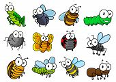 foto of insect  - Colorful collection of vector cartoon bugs and insects with caterpillars - JPG