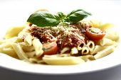 foto of italian food  - a plate of penne pasta with tomato sauce and a sprinkling of cheese garnished with a sprig of basil - JPG