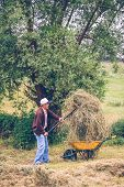 stock photo of wheelbarrow  - Portrait of senior man filling wheelbarrow of hay with pitchfork on a field - JPG