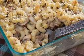 Stroganoff Mac & Cheese