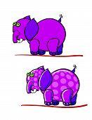 Elephants And Bubbles