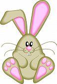 stock photo of buck teeth  - Cute Easter Bunny - JPG