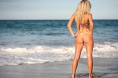 stock photo of woman g-string  - blond bikini models in yellow g - JPG