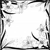 foto of art nouveau  - vector frame with lily in black and white colors - JPG