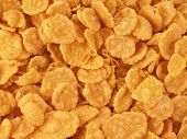 Corn-Flakes Bacground