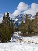 Scienic Mountain Road In Winter