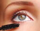 Brush For Eyelashs