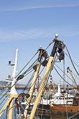 Ship Masts And Seagulls