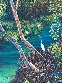 Egret In The Mangrove Forest