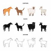 Vector Illustration Of Breeding And Kitchen Icon. Set Of Breeding And Organic Vector Icon For Stock. poster