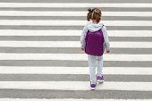Schoolgirl Crossing Road On Way To School. Zebra Traffic Walk Way In The City. Concept Pedestrians P poster