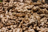 Ginger for sale in the asian market
