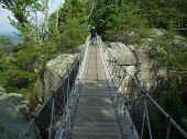 Senior On Swinging Bridge