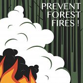 Prevent Forest Fires. Broadside. Advertising Forest Fire Prevention. Nature Protection Social Warnin poster