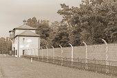 Picture of sachsenhausen-oranienburg was a nazi camp in germany.A popular game amongst the guards involved threatening a prisoner with death if they did not stand on the