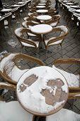 Caffee Garden On Snow