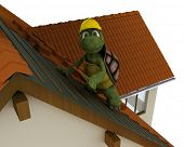 3D render of a tortoise roofing contractor