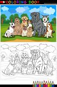 stock photo of bull-mastiff  - Cartoon Illustration of Funny Purebred Dogs like Bull Terrier Collie Bulldog Maltese Beagle Spaniel and Husky for Coloring Book or Coloring Page - JPG